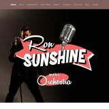 Musician Ron Sunshine