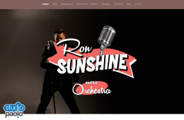 Ron Sunshine Website Design